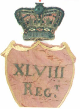 Center  Device  of  the  48th  Regiment's  Colours
