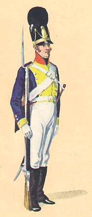 Bavaria: Senior NCO 10th Infantry Regiment Junker: 1806