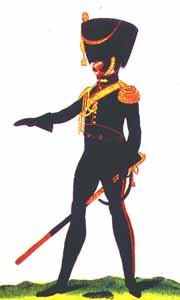 Polish Horse Artillery Officer: 1812