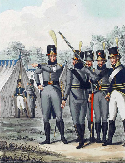 the swedish army in the napoleonic wars
